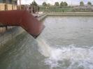 Vasca Bertolino